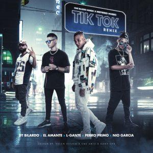 El Amante Ft. L-Gante, DT. Bilardo, Nio Garcia, Perro Primo - Tik Tok Remix