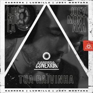 Cabrera Ft. Joey Montana, Ludmilla - Tua Raivinha